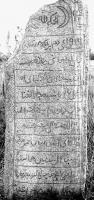 Читатели угадывают имя бердюжского шейха